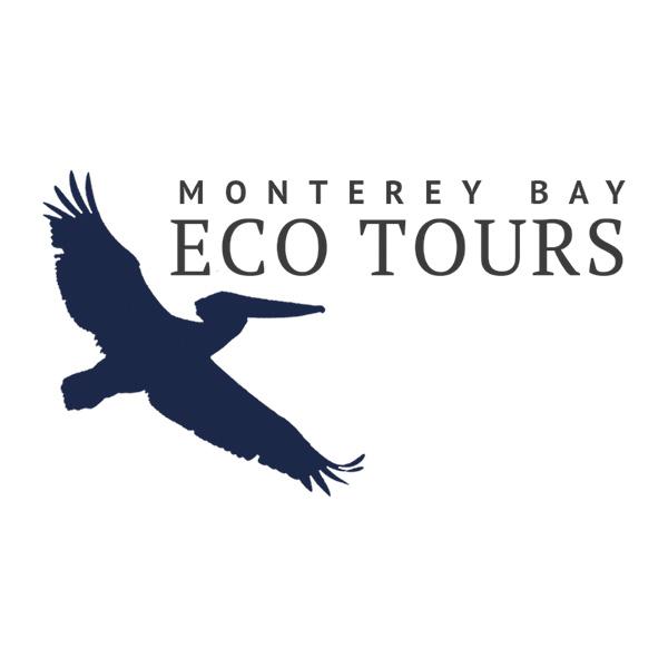 Monterey bay eco tours